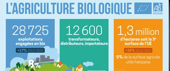 Avantages de l'agriculture bio par rapport à l'agriculture conventionnelle