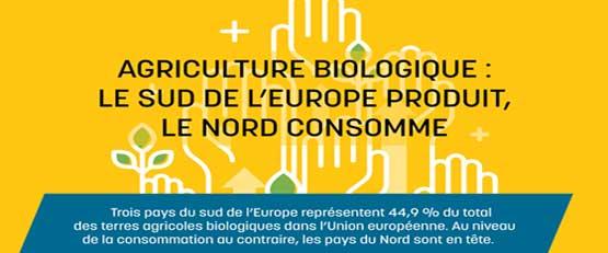 Agriculture bio en Europe: le sud produit, le nord consomme