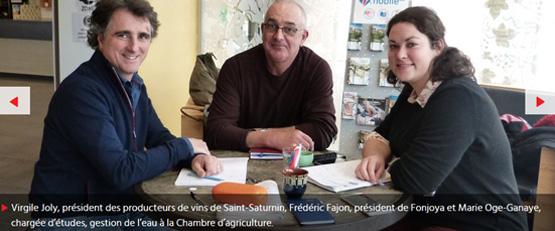 Vigne Hérault : Le projet d'irrigation des parcelles est lancé