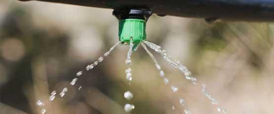 Viticulture héraultaise : un schéma directeur à 310 M€ pour l'irrigation