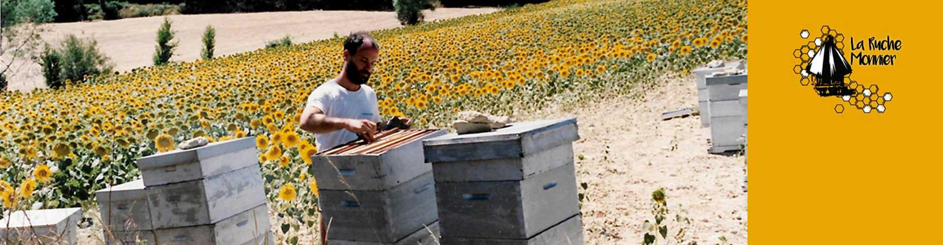 La Ruche Monnier, miels et produits de la ruche dans l'Hérault
