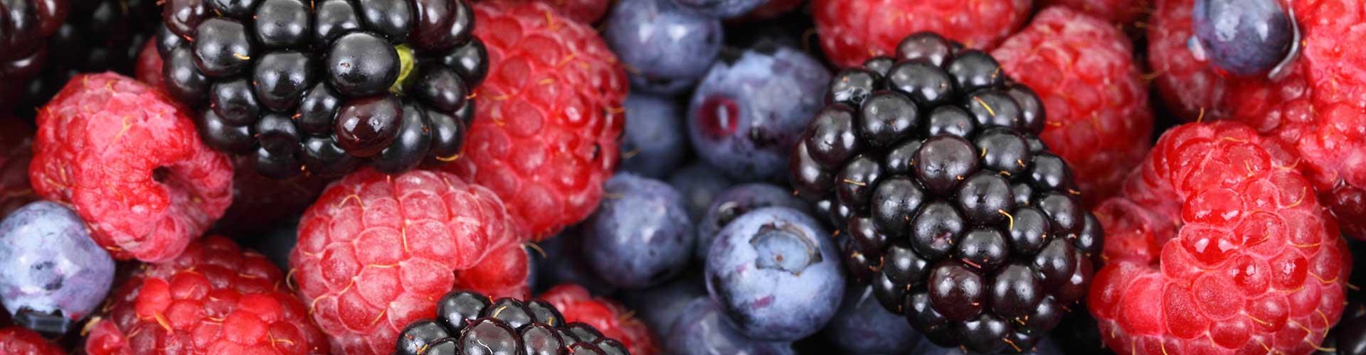 Les sorbets bio de Plein Fruits à Saint Etienne de Gourgas