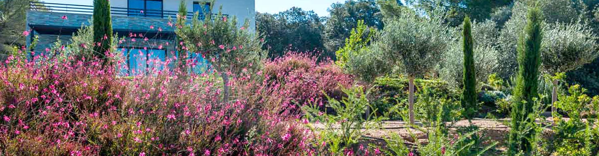 Terraverde, paysagiste et entretien espaces verts à Paulhan en Coeur d'Hérault