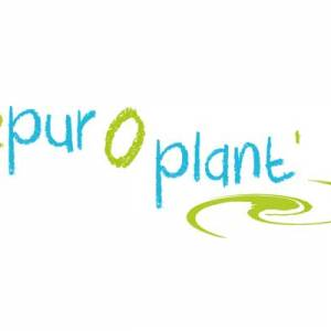 Epuroplant, assainissement naturel écologique en coeur d'Hérault