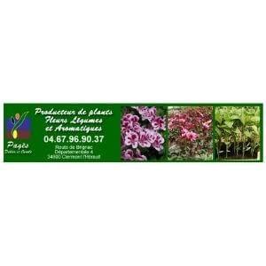 Pagès Didier Horticulture à Clermont l'Hérault