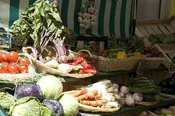 Les entreprises du Coeur d'Hérault dans la catégorie alimentation