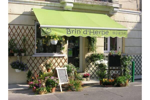 Brin d'Herbe - Canet