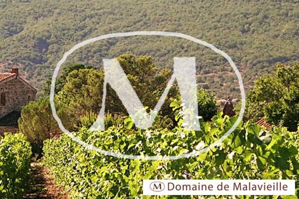 Domaine de Malavieille