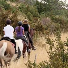Equi-Larzac randonnées à cheval