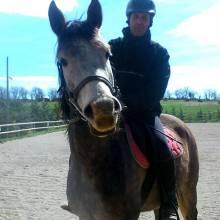 Equitation et Ethologie, obtenir une meilleure complicité avec son cheval