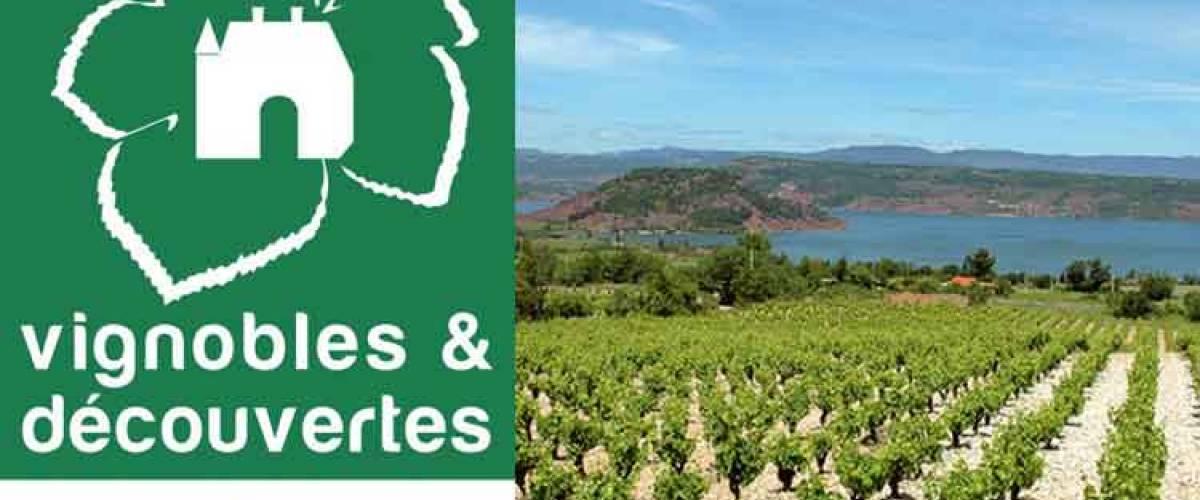 destination Languedoc coeur hérault vignobles et découverte